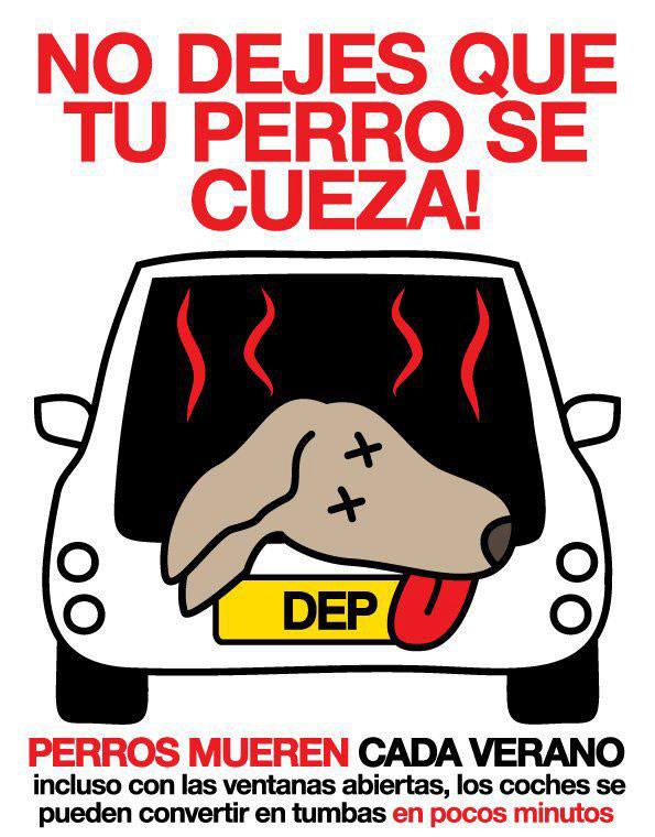 Los coches en verano, trampas mortales para nuestros perros